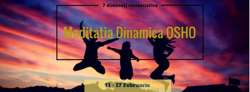 7 zile Dinamica_11-17feb2016